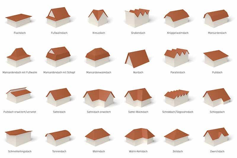 Dachs Arten